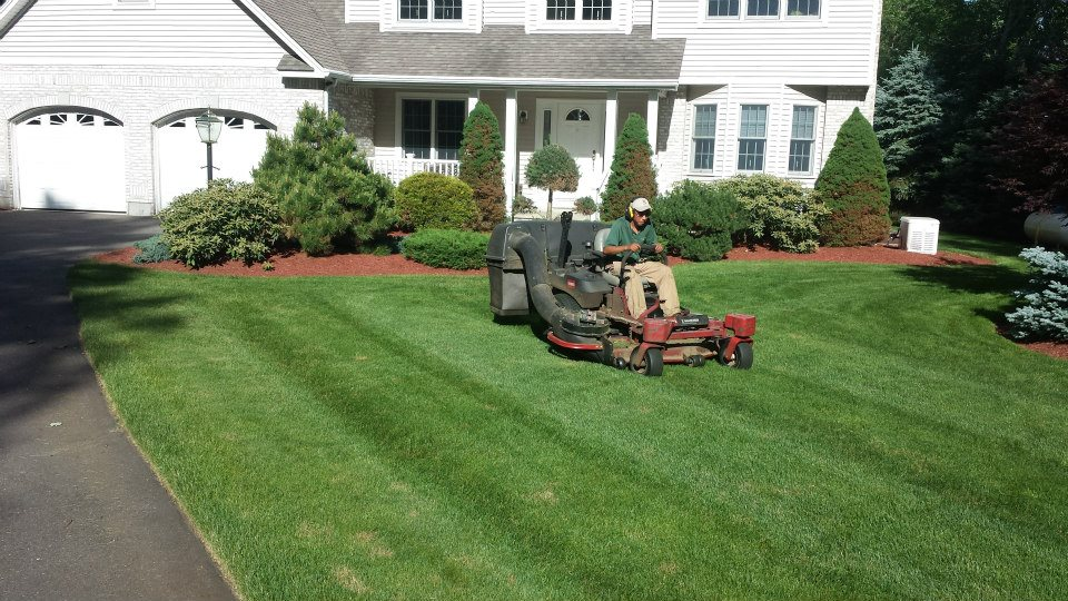 Century Oaks Landscaping, Coverntry, CT